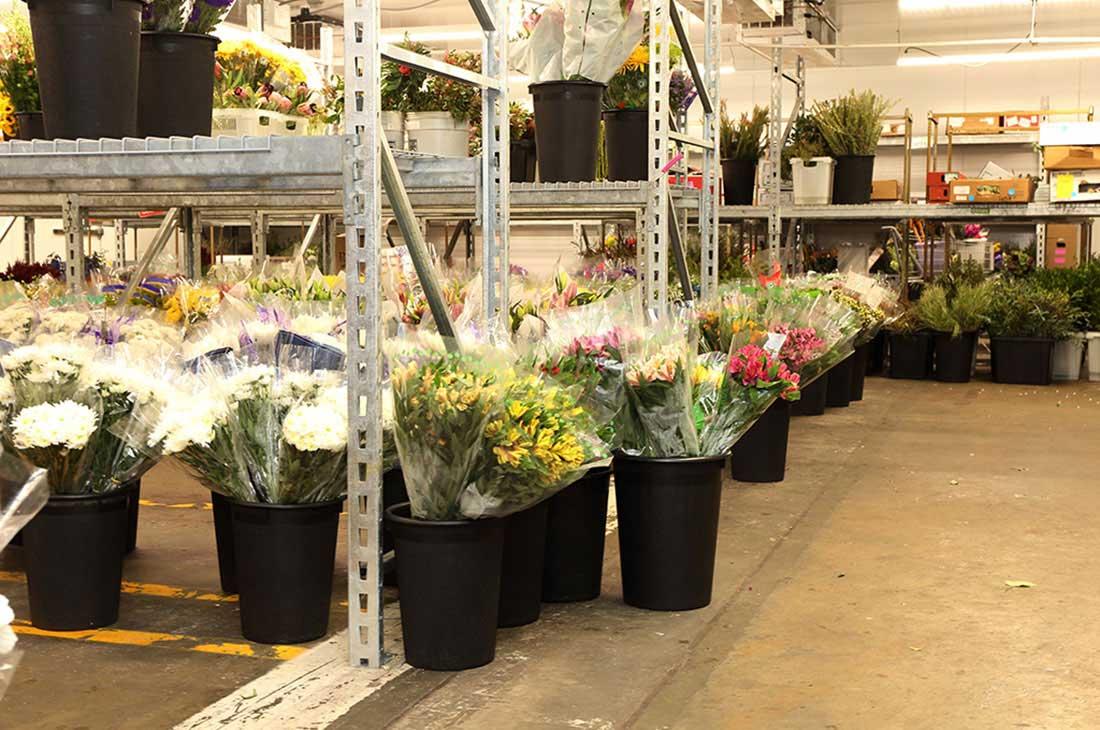 Photo 1 | Georgia State Floral Distributors, LLC