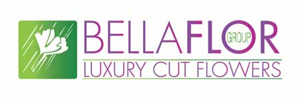 Logo - Bellaflor | Georgia State Floral Distributors, LLC