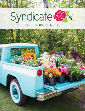 Syndicate Product Guide 2018 | Georgia State Floral Distributors, LLC